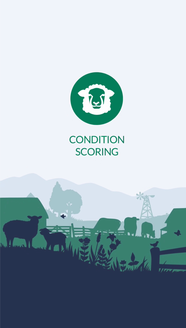 Sheep Condition Scoring app start screen