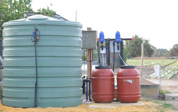 Example of fertigation equipment used in strawberry production