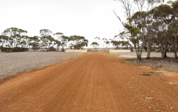 Farm driveway