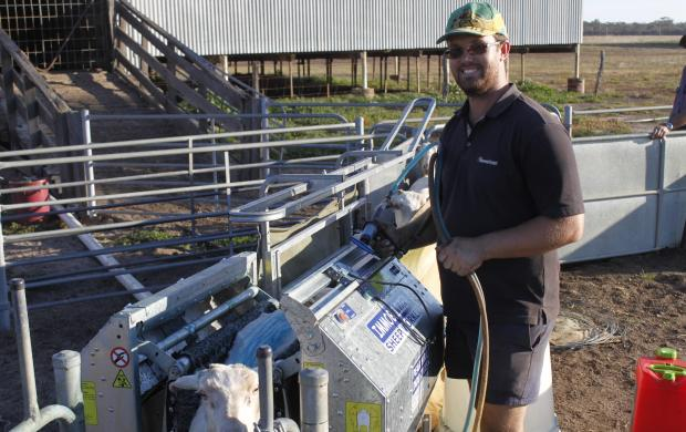 Broomehill farmer Scott Newbey said using the sheep handler is saving him time and allowing him to improve his on-farm management practices.