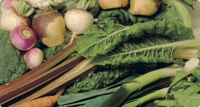 A photograph of vegetables produced using an organic production system.