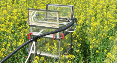 photograph shows automated gas chamber (open) measuring greenhouse gas emissions from crops (canola)