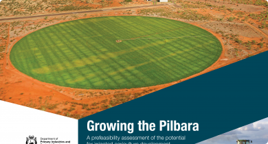 Growing the Pilbara details the findings of the Pilbara Hinterland Agricultural Development Initiative (PHADI). It delivers a prefeasibility level assessment of the irrigation development opportunities in the Pilbara region of Western Australia.