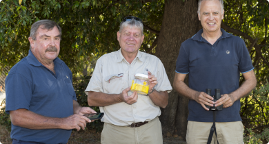 DAFWA's European wasp field staff