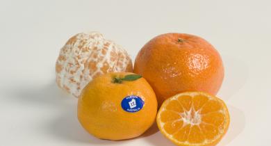 WA mandarins
