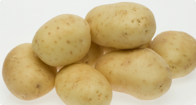 Close up of white star potatoes on white background