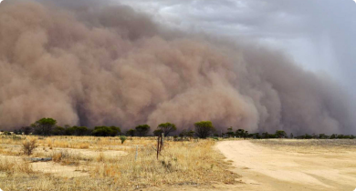 The Central Northern Wheatbelt agricultural soil zone was assessed as having an unacceptable hazard of wind erosion in 2011.