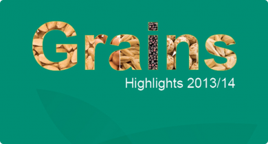 Cover image of the publication grains highlights 2013 2014