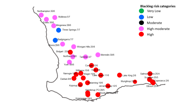 Canola Blackleg Spore maturity map