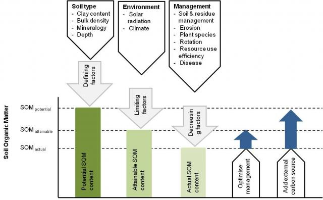 The influence of soil type, climate and management factors on potential soil organic matter content (after Ingram and Fernandes, 2001).