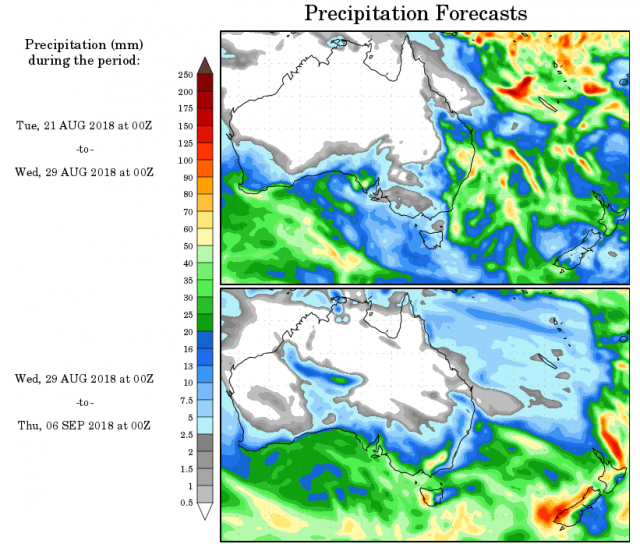 Map of Australia showing forecast rainfall from the NCEP model for 28 August to 6 September  2018