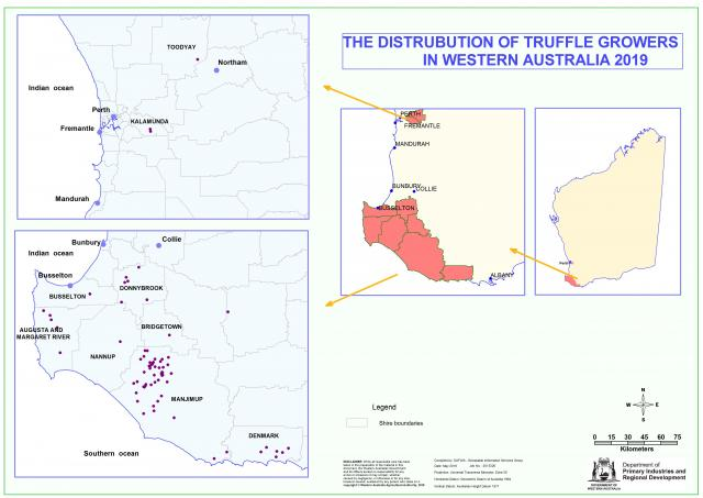 Location of truffle orchards in Western Australia, showing a large cluster in the Manjimup Shire