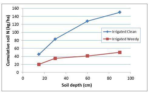 Figure 1: Effect of wet and weedy summer conditions on soil N measured at the end of summer fallow in 2003