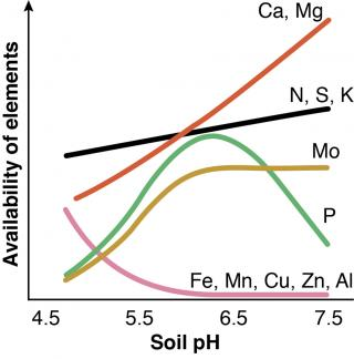 Line drawing of nutrient availability in soils at different levels of acidity