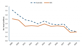 Chart illustrating the number of live sheep exports from Australia and WA between 2009 and 2019