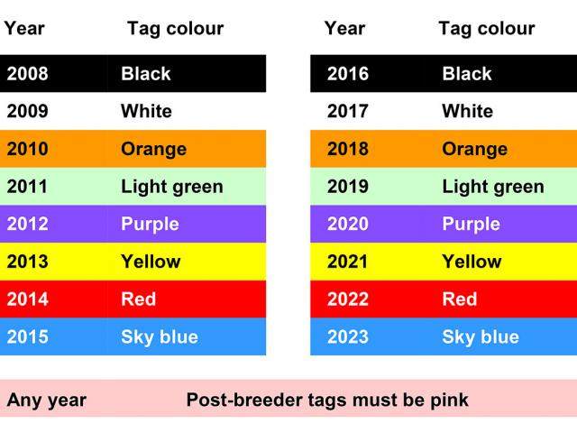 Image shows approved sheep year of birth colour of year system.