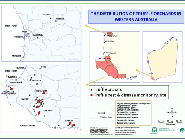 Location of truffle orchards in Western Australia and truffle pest and disease monitoring sites