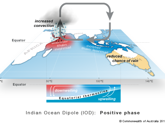 Diagram showing the positive phase of the Indian Ocean Dipole, warmer waters off Africa and cooler waters off north-west Australia. This results in reduced rainfall from May to November in some parts of Australia.
