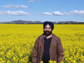 Man standing in a yellow canola crop.