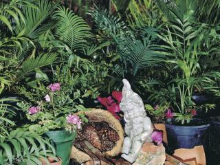 Garden scene with plaster gnome, potted plants and a selection of garden tools.