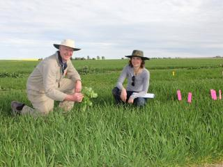 A man and a woman crouching in a green paddock.