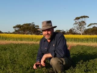 Man crouched in a canola crop