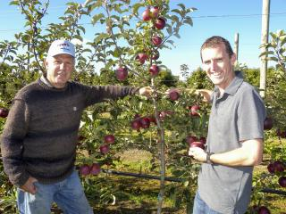 Apple grower Vic Grozotis and Department technical officer Steele Jacob