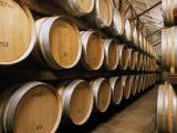 Wine barrels in a commercial cellar