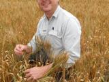 Research officer Ben Biddulph standing amongst a wheat crop