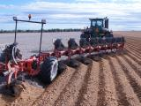 One-off soil inversion using a mouldboard plough