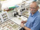 DPIRD taxonomist with insect specimens