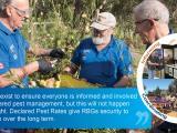 RBG activities - cotton bush