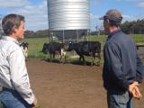 DPIRD vet and producer at dairy property with NAMP trap