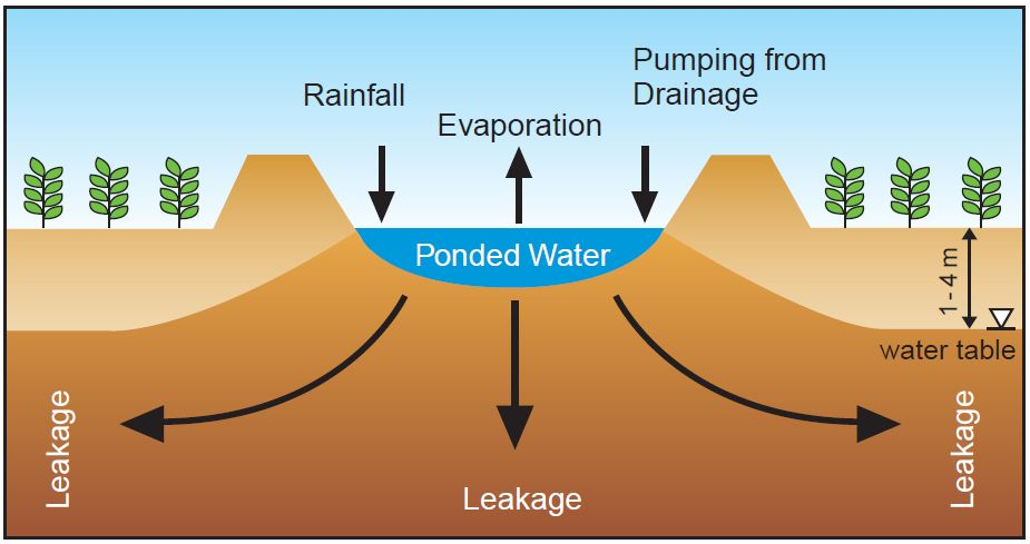 evaporation basins for salinity management agriculture and food rh agric wa gov au