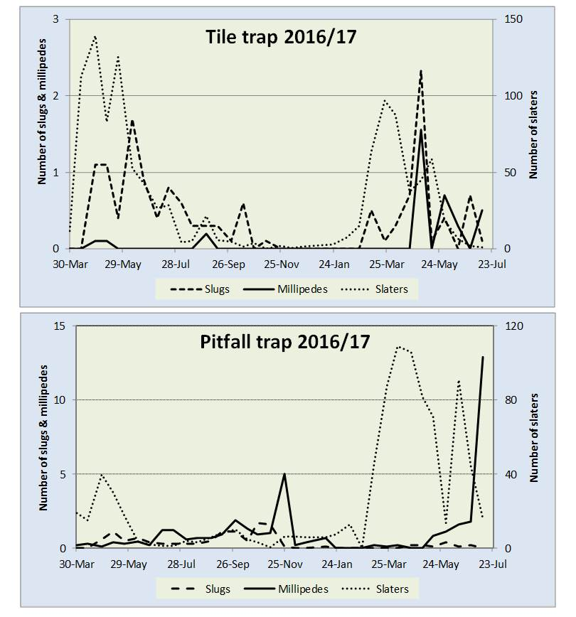 Australian Truffle Pest Disease Newsletter Issue 4 August 2017