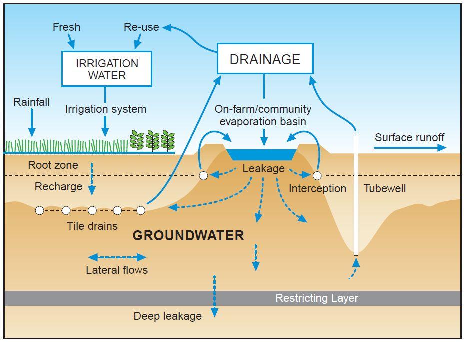Evaporation Basins For Salinity Management Agriculture