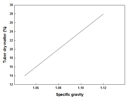 The figure demonstrates that there is a close relationship between the specific gravity and dry matter content of tubers