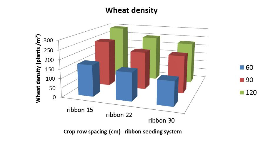 Wheat seeding efficiency (i.e. % of seeds sown that emerged) of ribbon seeding system at three crop row spacings across three seeding rates of 60, 90 & 120 kg/ha