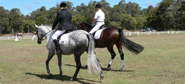 A grey horse and a dark brown horse are being ridden by ladies training for a show.