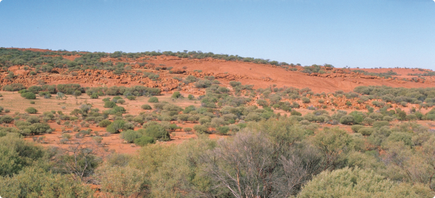Rangeland landscape