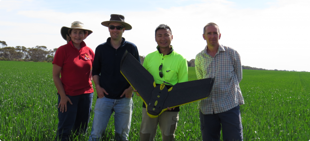 DAFWA Research Officers Andrea Hills, Dr Daniel Huberli, and Geoff Thomas with Rain Liu, using UAV's (unmanned aerial vehicles) to collect images for study of rhizoctonia bare patch in cereal paddocks.