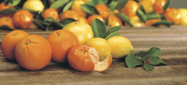 Bunch of citrus