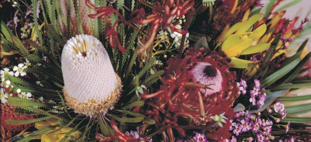Flower arrangement of Western Australian native flowers including wax flowers, Banksia's, Kangaroo Paw and Verticordia.