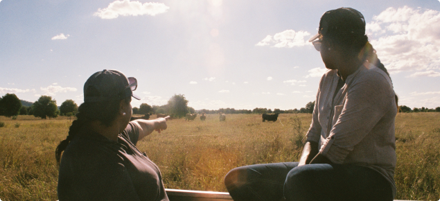 Two Aboriginal women in a ute trayback pointing to cattle