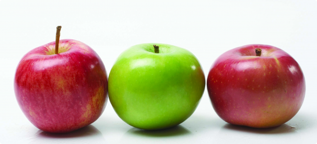 Research into the health benefits of apples is expected to increase the value of the WA apple industry and contribute to improved human dietary health.