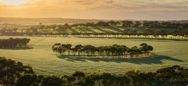 Avon Valley in the south west Agriculture region