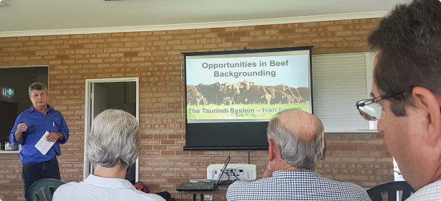 Presenter at beef backgrounding systems workshop