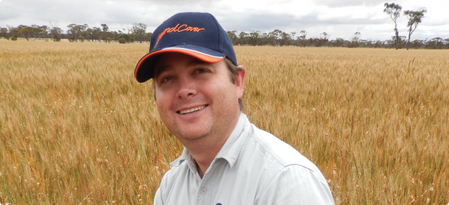 Research officer Ben Biddulph standing amongst a wheat crop