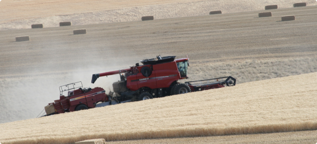 Harvester in paddock