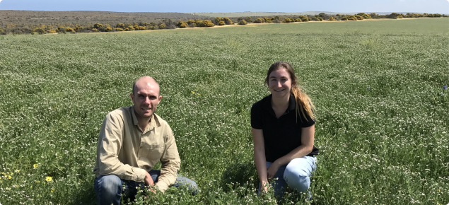 Crop production and crop protection agronomists in a paddock